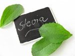 Afriplex on mission to develop a South African stevia