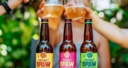 Taking kombucha in SA to new levels of brewing
