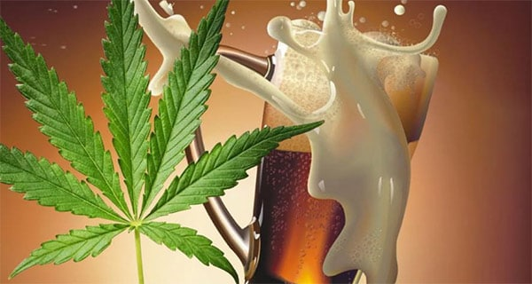 Legal cannabis poses a long-term risk to All beverage alcohol categories