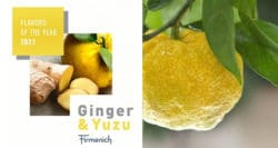 Firmenich's two Flavours of the Year for 2021: a super-root and a super-fruit