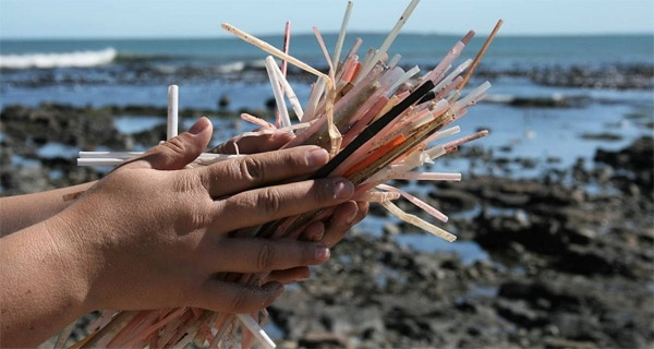 'No to plastic straws' movement takes off in SA