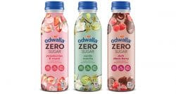 US: Coca-Cola brand Odwalla launches zero-sugar smoothie