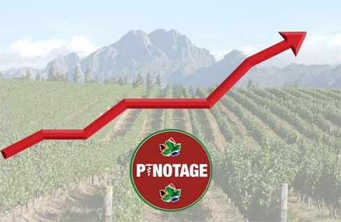 From reviled to revered: halcyon days for SA's Pinotage