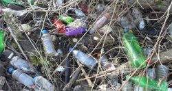 Coca-Cola, Nestlé, and PepsiCo are the world's biggest plastic polluters — again